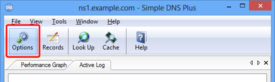 Specific DNS server software - Simple DNS Plus