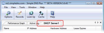 Plug-ins in Simple DNS Plus