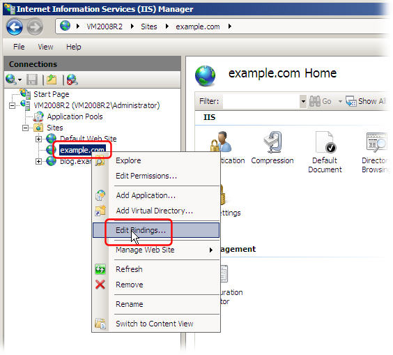 Virtual hosting with IIS (Internet Information Services