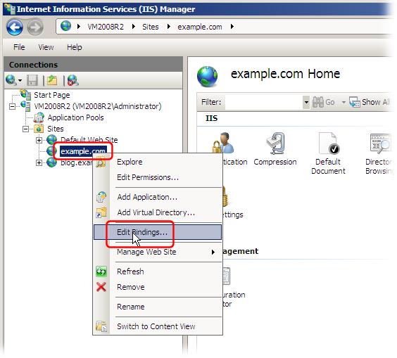 Хостинг с iis как сделать сервер через бесплатный хостинг